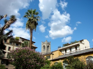 The view from the center of Firenze's botanical garden